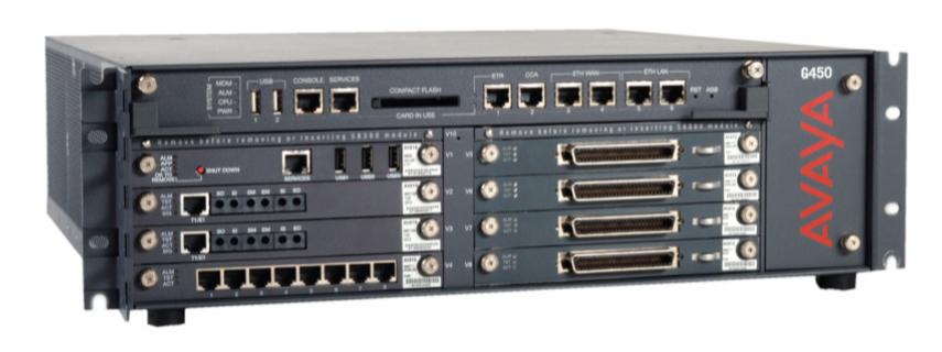 Avaya S8300/S8800 Server com Avaya G450 Gateway